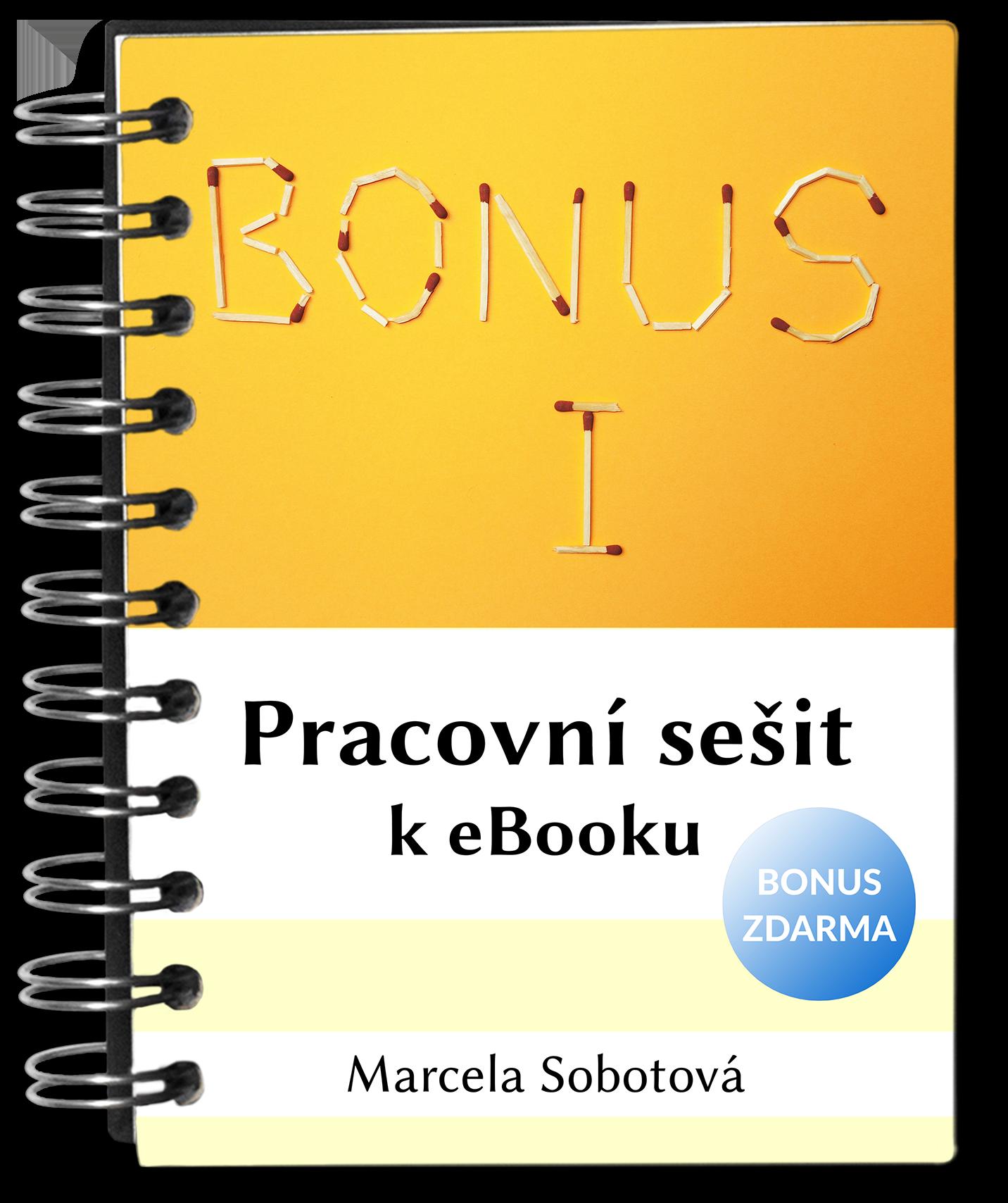 pracovní sešit zjednodušujeme aneb více místa pro život, Marcela Sobotová