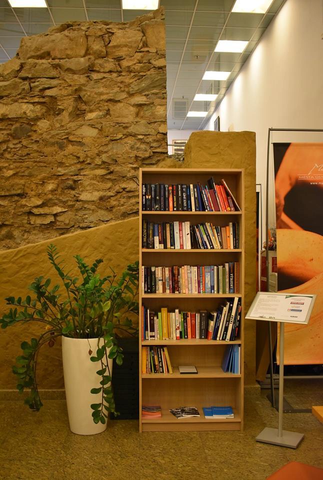mapa knihobudek, knihobudka, knihobudky, veřejné miniknihovničky, rozhovor, Jan Bičák, minimalismus, Marcela Sobotová, Ústní nad Labem