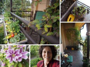 balkónová zahrádka, zahradničení